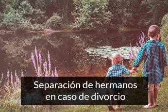 separacion de hermanos en el divorcio