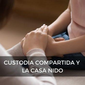 CUSTODIA COMPARTIDA Y LA CASA NIDO